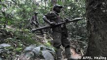 Ruanda-Rebellen von Sylvestre Mudacumura befehligt