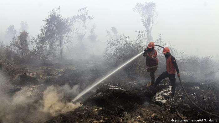 Indonesia forest fires spew smoggy haze over Malaysia, Singapore