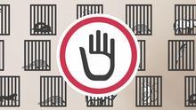 Infofilm: Wildtierhandel - Was tun gegen das kriminelle Geschäft?