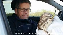 The buzzard along with one helpful police officer (picture-alliance/dpa/Kreispolizeibehörde Soest)