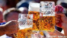 21.09.2019 *** Visitors drink beer after the start the Oktoberfest beer festival at the Theresienwiese in Munich, southern Germany, on September 21, 2019. - The world's biggest beer festival Oktoberfest opens today and runs until October 6, 2019. (Photo by Tobias SCHWARZ / AFP)