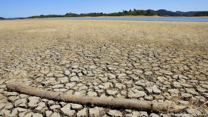 Chile Dürre (picture-alliance/dpa/C. Bueno)