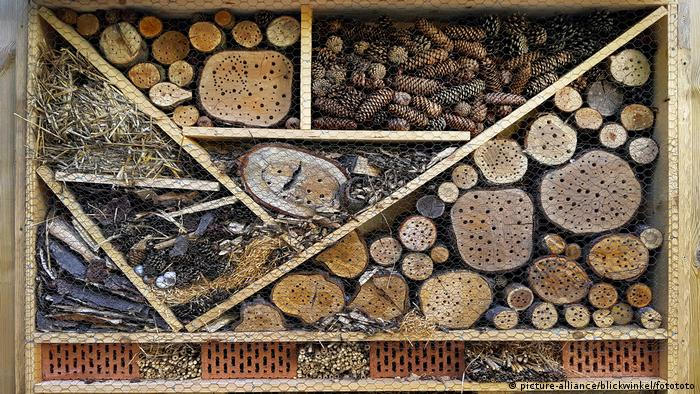 Hotel para insetos com troncos e caules cheios de buracos de vários tamanhos