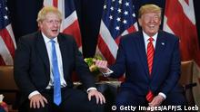 New York UNO Treffen Johnson Trump