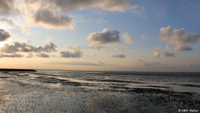 Mudflats and the sea above a cloud-peppered sky