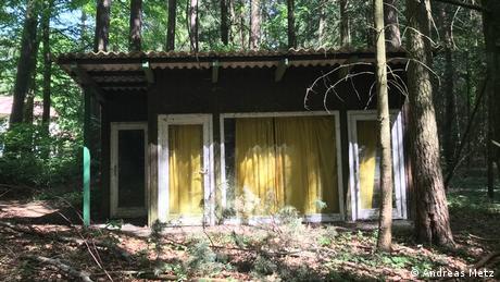 Fachada de cabana no mato com quatro aberturas e cortinas amarelas