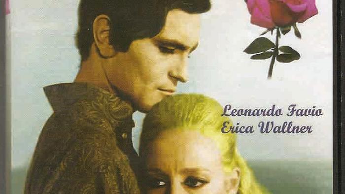 Cartel de la película Simplemente una rosa en 1971