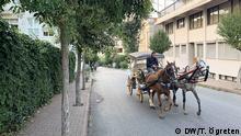 Türkei Pferdektuschen in Büyükada