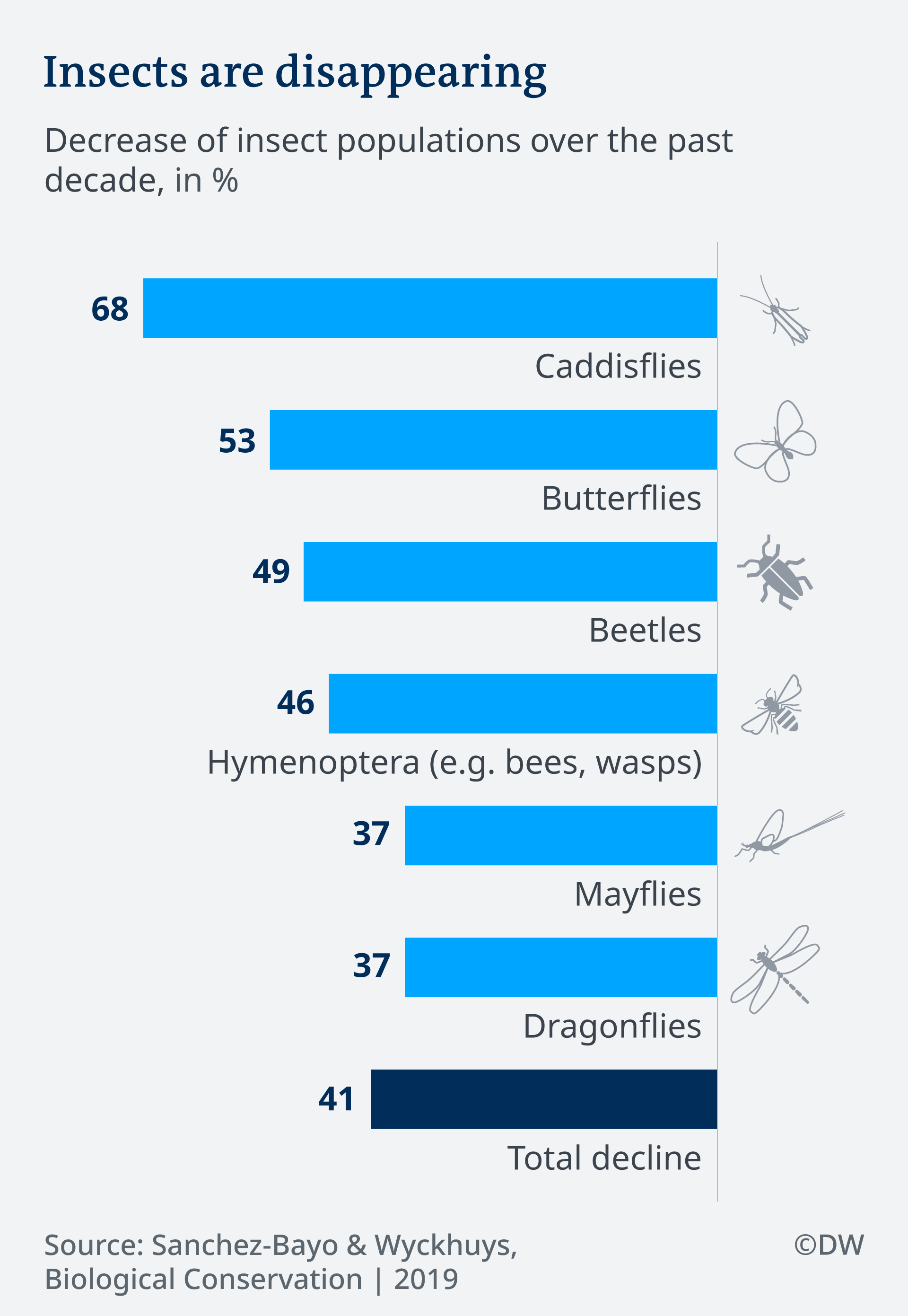 Infographic: Insects are disappearing