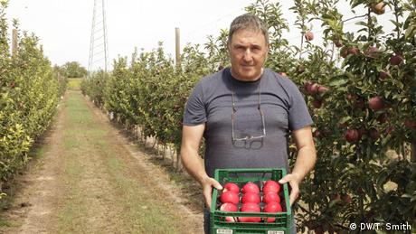 Spanish apple farmer holding a crate of apples (DW/T. Smith)