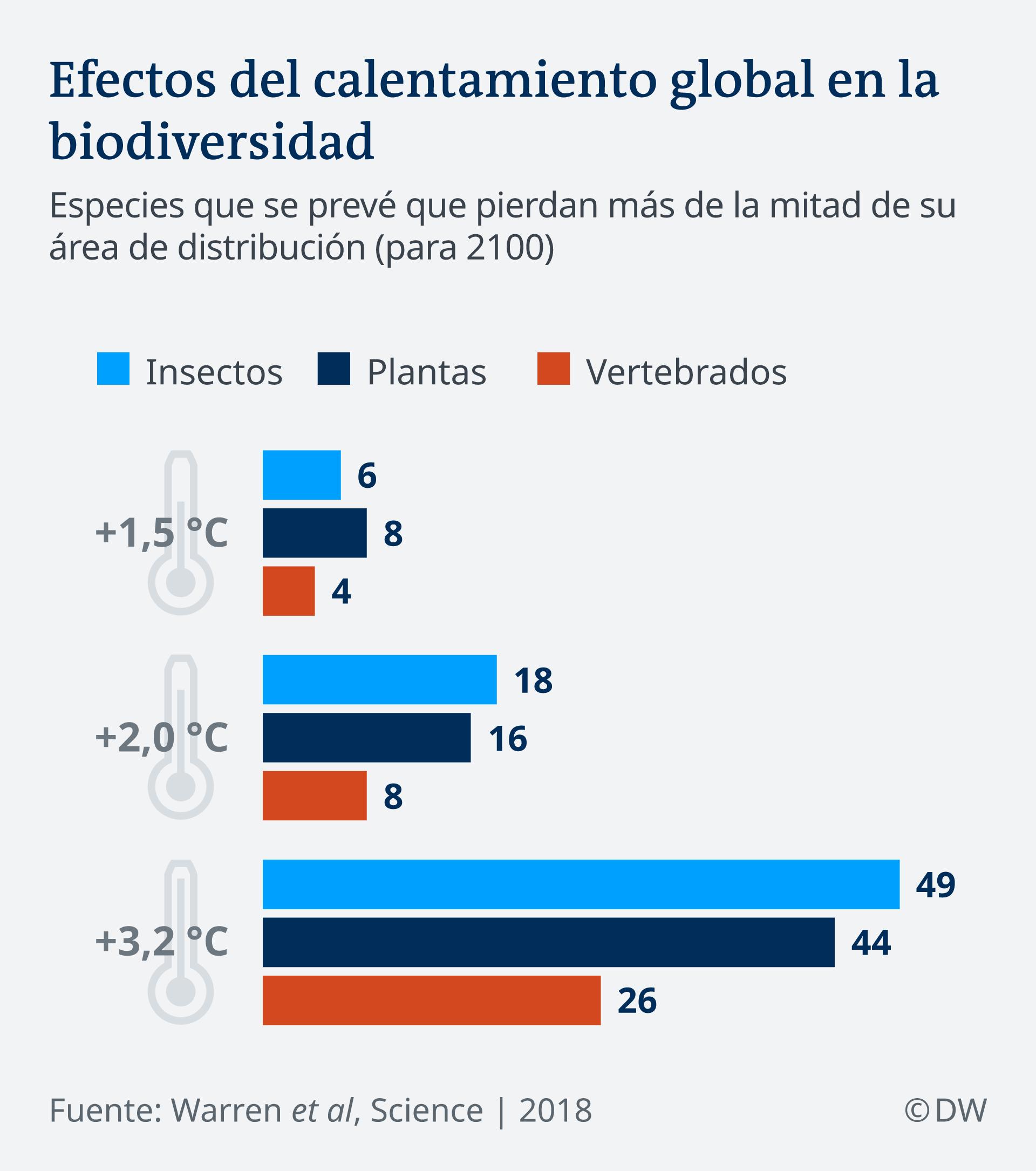 Infografik Insektensterben Artenvielfalt ES