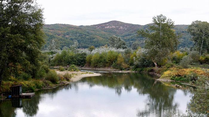 Krivudavi tok Zapadne Morave