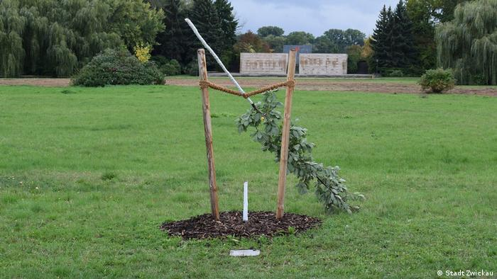 A small oak tree dedicated to the first murder victim of the NSU has been sawed down in Zwickau, Saxony