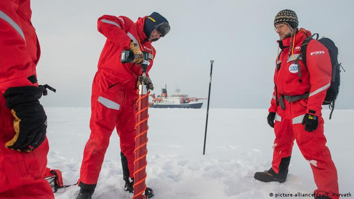 Researchers from the Polarstern take ice core from the Arctic