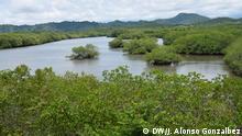 BG Tiere & Pflanzen in Costa Rica