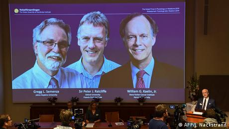 Three winners of 2019 Nobel Prize for Medicine winners (AFP/J. Nackstrand)