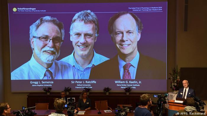 De izquierda a derecha, Gregg Semenza, Peter Ratcliffe y William Kaelin