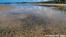 Brasilien Ölverschmutzug Strand in Cabo de Santo