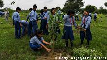 Indien, Hyderabad: Schulkinder pflanzen Bäume