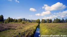 Moorlandschaft - Europa -Ahlenmoor