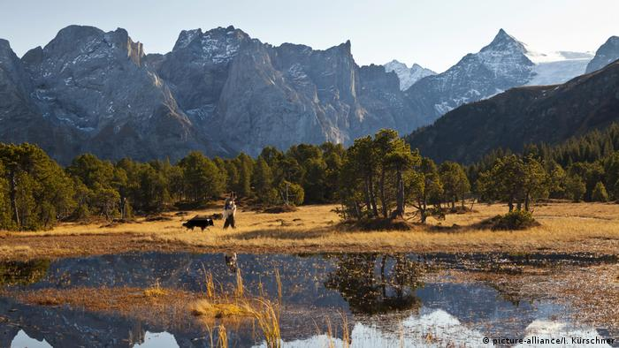 Swiss countryside