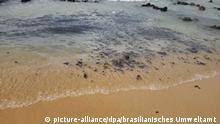 Rohöl verschmutzt Strände an der brasilianischen Küste