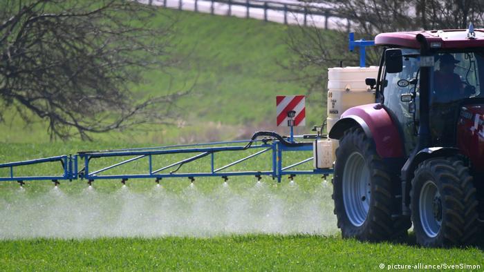 Uso de Roundup, el pesticida que contiene glifosato, de Bayer, en un cultivo.