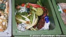 ARCHIV - Sammeltonnen mit Obst-, Gemüse- und andere Lebensmittelabfällen stehen am 25.08.2011 in der Aufbereitungsanlage einer Biogasanlage in Hamburg. Foto: Christian Charisius/dpa (zu dpa Umweltminister planen Maßnahmen gegen Lebensmittelverschwendung) | Verwendung weltweit