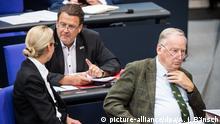 Bundestag Brandner Gauland Weidel AfD