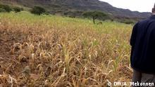 17.10.2019 Äthiopien, Gonder, Amhara Waghmera Zone, Trockenheit