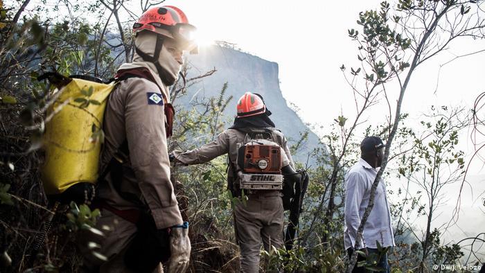 Wildfires in Brazil