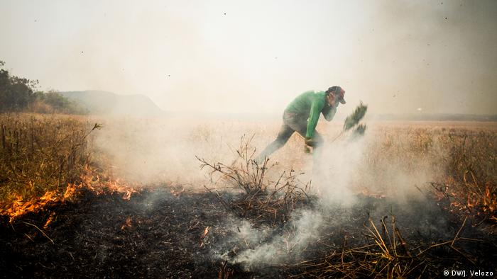 A man covers his face as he beats back the flames from a wildfire