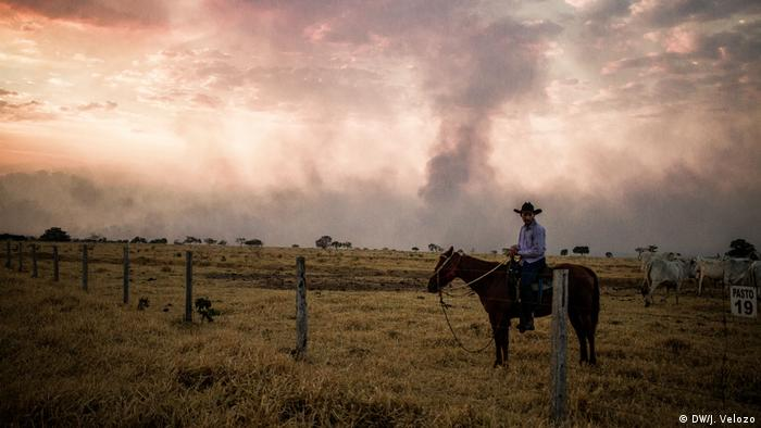 A man on horseback in a field. In the distance, smoke from fires fill the sky