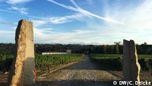Quinta da Teixuga: Weingut in Portugal