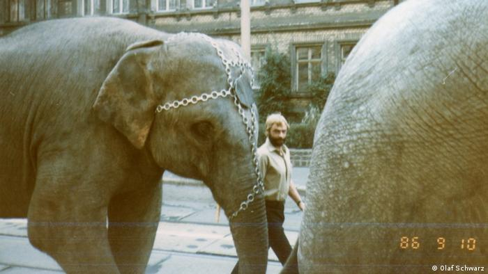 Olaf Schwarz leading circus elephants in the GDR