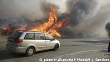 USA Kalifornien Buschbrände