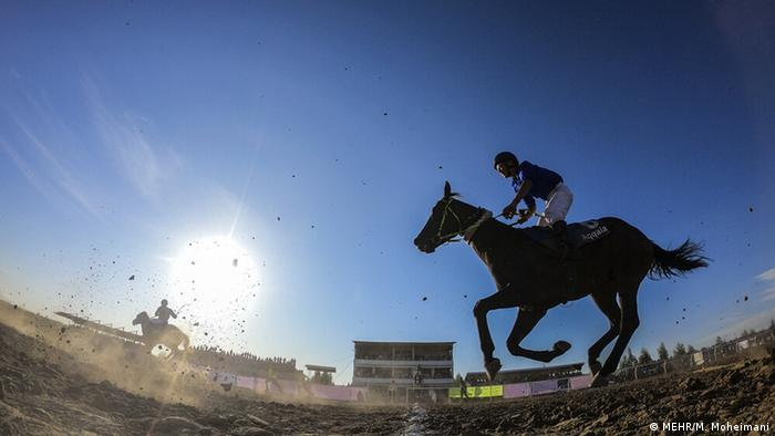 مسابقات کورس اسبدوانی پاییزه آققلا با شرکت ۵۹ راس اسب در شش دور به مسافتهای ۱۰۰۰ و ۱۲۰۰ متر در مجموعه سوارکاری این شهرستان برگزار شد. در پایان این هفته از رقابتها ۱۲۰ میلیون تومان جایزه نقدی به چابکسوران، مالکان و مربیان اسبهای اول تا چهارم پرداخت شد.