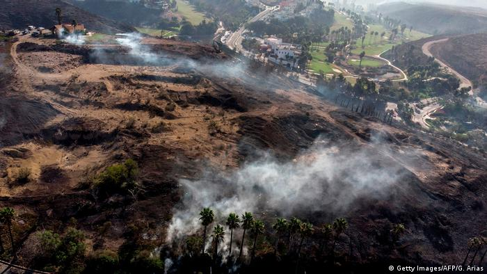 Mexiko | Waldbrände in Tijuana