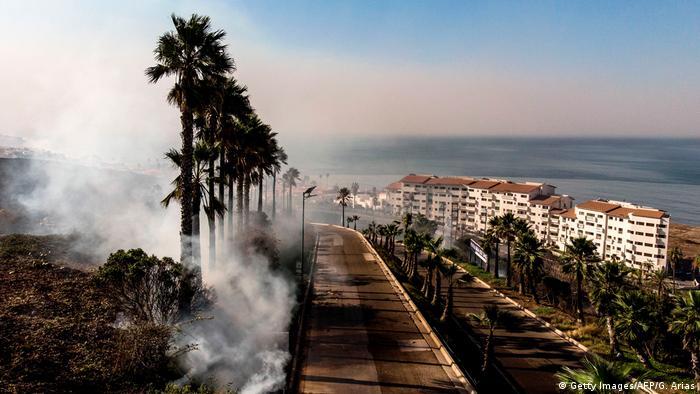 Mexiko   Waldbrände in Tijuana (Getty Images/AFP/G. Arias)