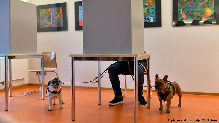 همه کسانی که تابعیت آلمان و حداقل ۱۸ سال سن دارند، میتوانند در انتخابات پارلمان آلمان شرکت کنند. این افراد همچنین میتوانند در انتخابات ایالتی، انتخابات محلی (شهرداریها) و انتخابات پارلمان اتحادیه اروپا شرکت کنند. در ضمن همه شهروندان آلمانی که حداقل ۱۸ سال سن دارند، میتوانند خود را نامزد نمایندگی در پارلمان کنند.