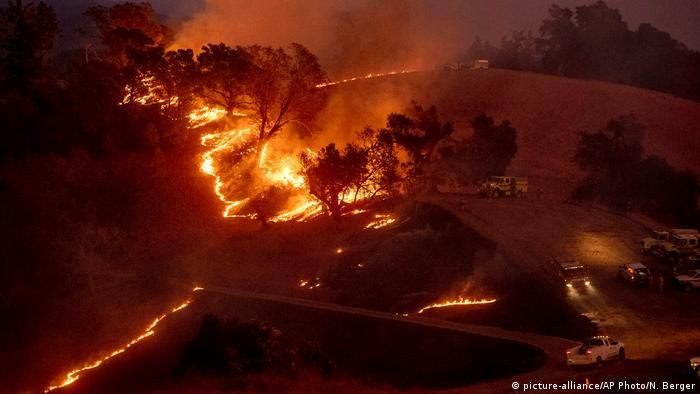 USA Walbrände in Kalifornien