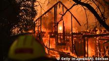 BG Waldbrände in Kalifornien