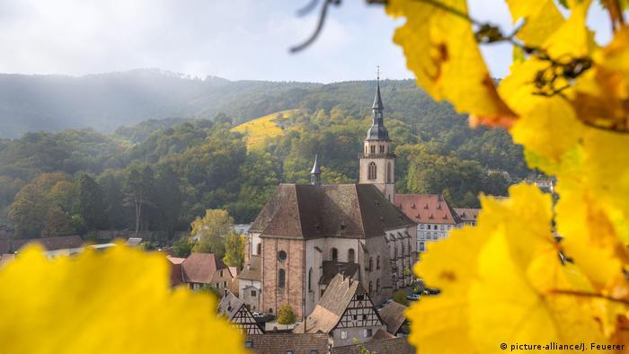 Deutschland Weinberge im Herbst Elsässer Weinstraße