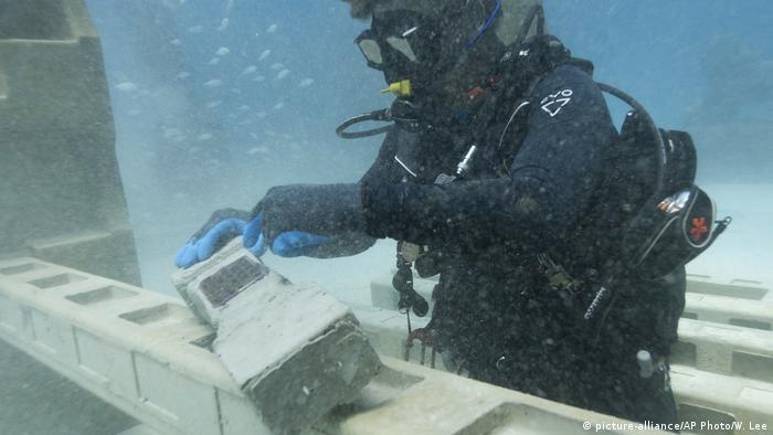 BG Friedhöfe Neptune Memorial Reef (picture-alliance/AP Photo/W. Lee)