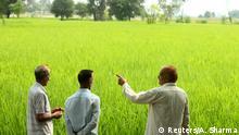 Indien | Zunehmende Abwehrkräfte begrenzen das Ackerland an der Grenze zu Pakistan