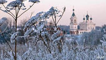 Snow-covered frozen plants with a castle in the background