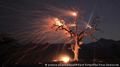 BdTD USA Waldbrände in Kalifornien (picture-alliance/dpa/AP/Kent Porter/The Press Democrat)