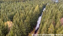 BdT Herbst im Erzgebirge & Fichtelbergbahn