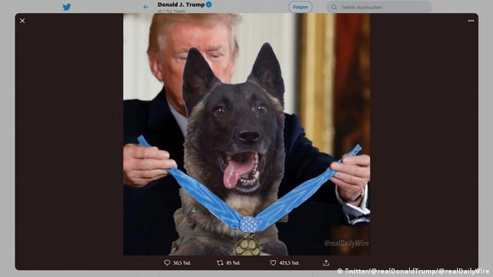 Screenshot Twitter Donald Trump Hund Conan (Twitter/@realDonaldTrump/@realDailyWire)