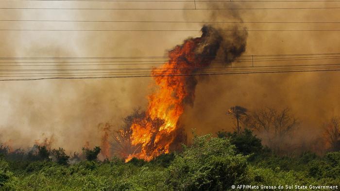 Fogo em Corumbá: chamas chegam a seis metros de altura